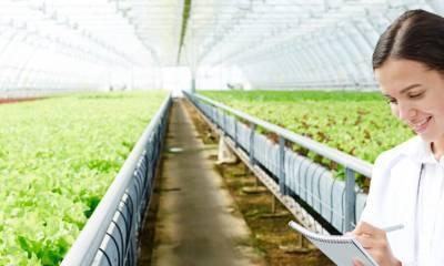 Projetos de custeio,  investimentos e desenvolvimento para agricultura e pecuária.